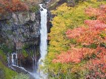 華厳の滝の紅葉