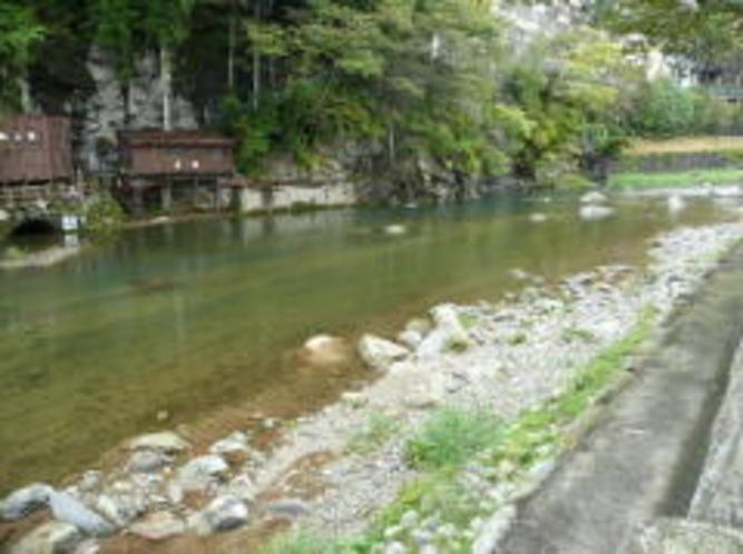 川治温泉キャッチ&リリース