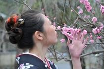 春の嵐山⑤