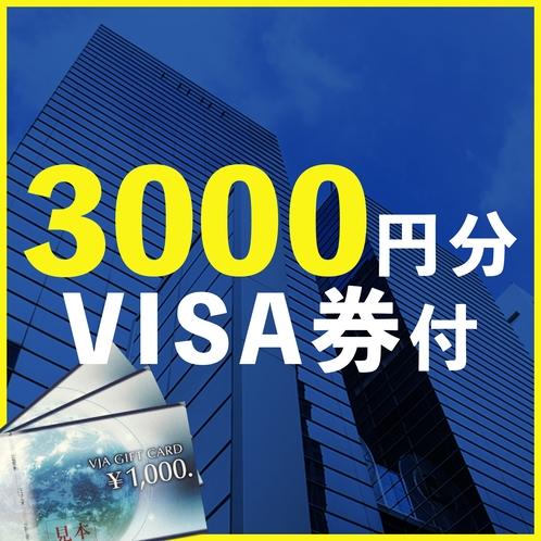 3000円分VISA券付きプラン