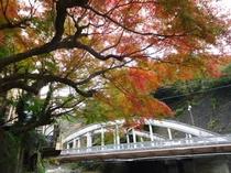 萬翠楼前の紅葉