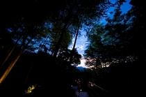 【中庭】夜イメージ3