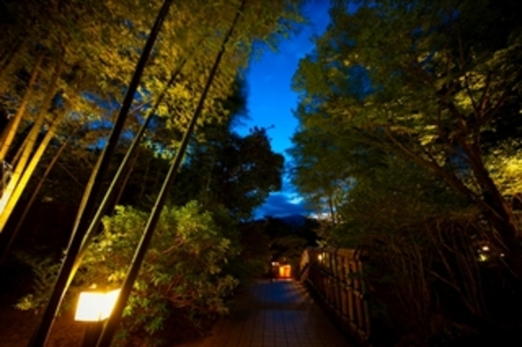【中庭】夜イメージ2