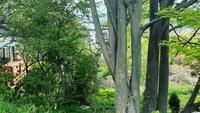 【ワーケーション】国定公園に位置する<生駒市>でのんびり滞在をご提案!(日帰り)