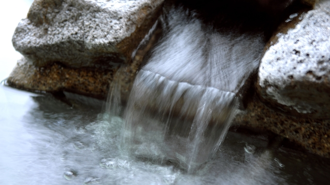 自由気ままに…【おひとりさま】旅行♪1泊2食◆グレードUP「恵みの森の温泉ご馳走プラン」