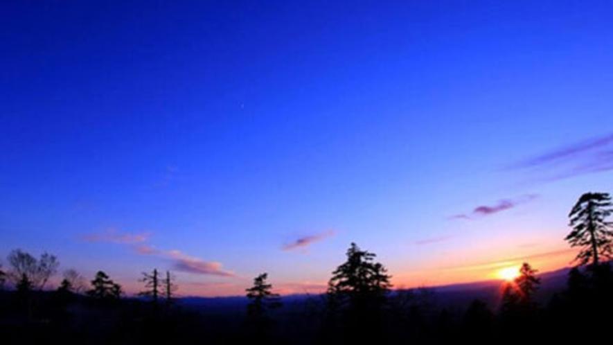 【周辺】森の夕暮れ