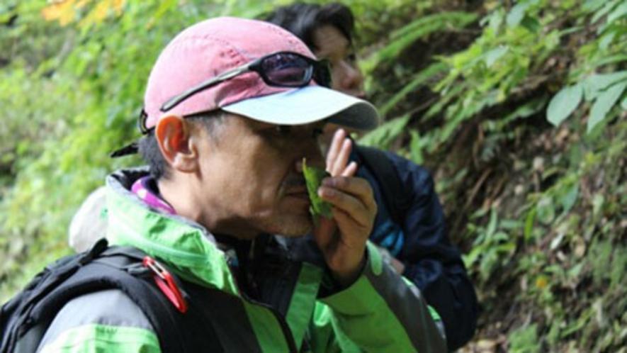 【アクティビティ】森林セラピー-3