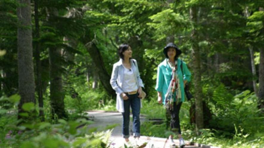 【アクティビティ】森林セラピー-1