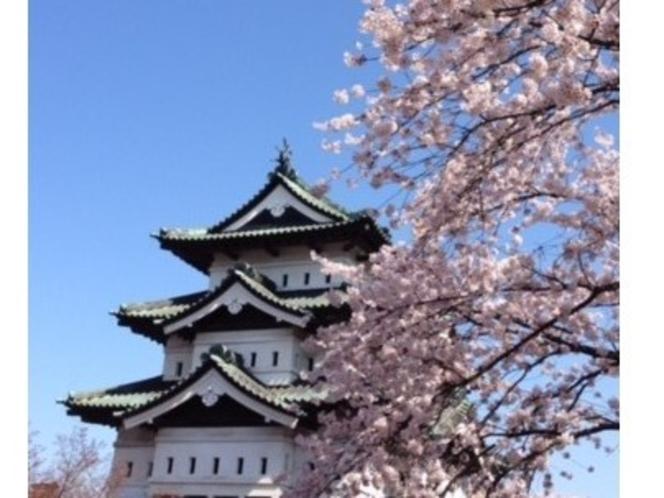 弘前城の桜まつり
