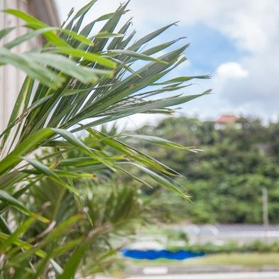 【夏秋旅セール】沖縄本島を楽しみつくす☆夏休みのカップルにも♪素泊まりプラン♪