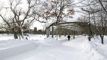 【冬】中島公園