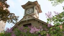 【春】札幌時計台とライラック