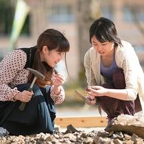 【化石発掘体験】
