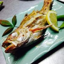 油がのって美味しい焼き魚のどぐろ