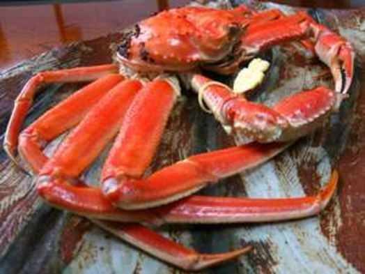 黄タグ付き「越前蟹フルコース」【1キロ以上保証!】ぎゅっと身詰まってます!1人1杯使用