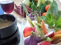 鎌倉野菜と自家製バーニャカウダ