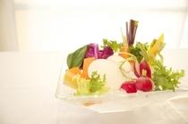 鎌倉野菜のバーニャカウダ10