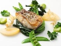 お魚料理イメージ
