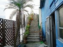 沖縄植物観賞階段