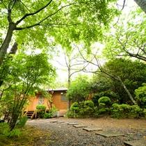 【桜草】客室風呂貸し別荘