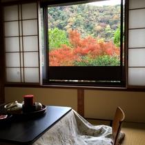 お部屋からの紅葉