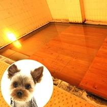 ワンちゃんたちの温泉は安全・快適な入浴を考慮した段差付き♪もちろん「湯畑源泉」100%!
