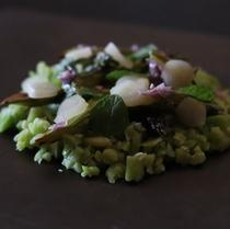 空豆と発酵ホワイトアスパラ