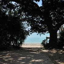 *【カイジ浜&星砂の浜】自転車で15分!カイジ浜の一部「星砂の浜」では、有名な星の砂を見られます。