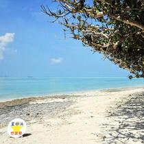 *【カイジ浜&星砂の浜】喧騒から離れた静かなビーチ。運が良ければ星の砂や太陽の砂が採れるかも♪