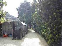 ハイビスカスのある今泊集落は、城下町の面影を残す古い街並み