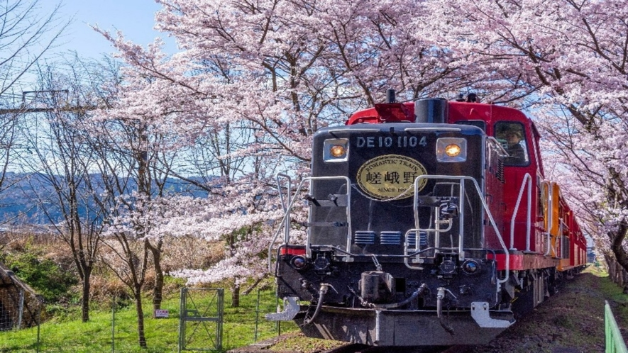 ◆嵯峨野トロッコ列車(春)
