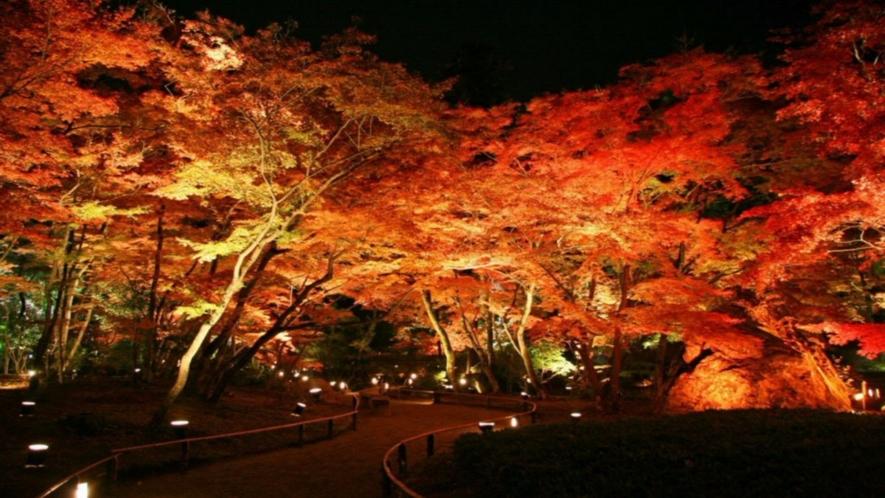 ◆天龍寺塔頭・宝厳院ライトアップ