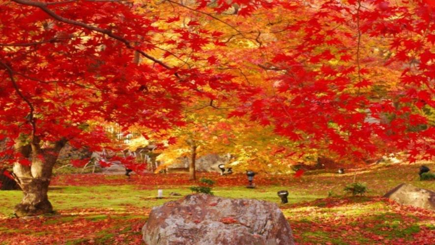 ◆《世界文化遺産:天龍寺 宝厳院》