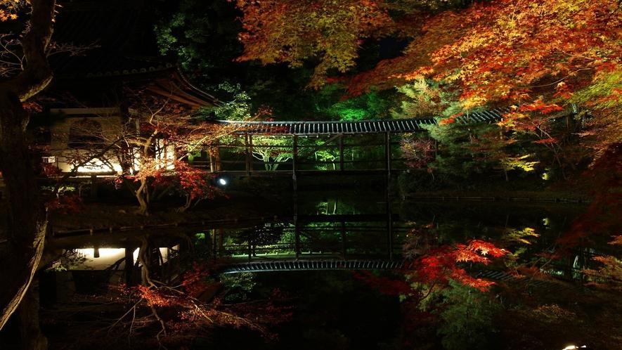 ◆秀吉とねねのお寺『高台寺』