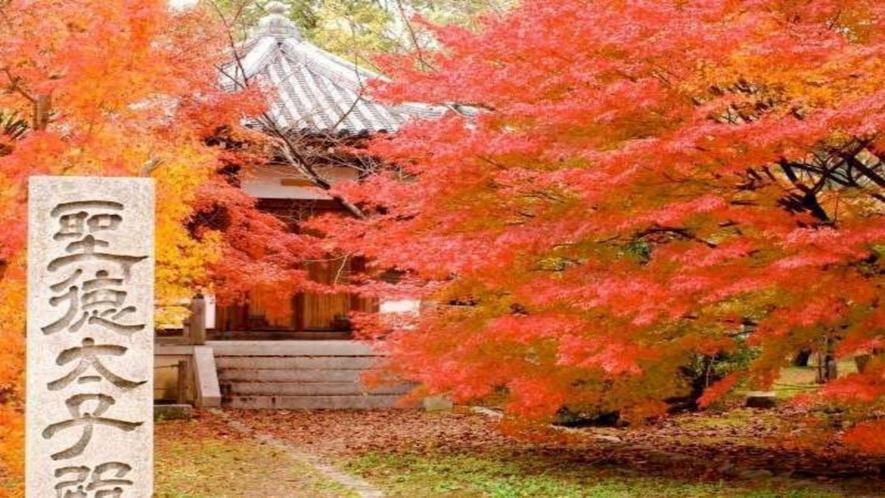 ◆《清涼寺》(嵯峨釈迦堂)