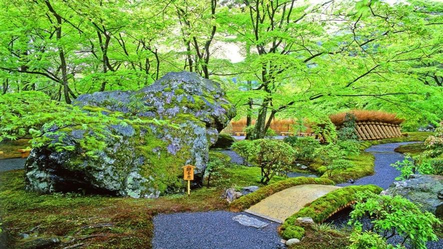 ◆京都を感じる不変の美。宝厳院の庭園。