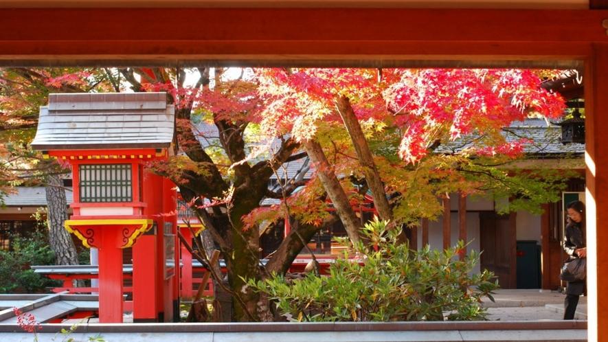◆《芸能神社とも言われる車折神社の紅葉》