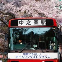 *【春】周辺風景/街の中でも、桜の木が咲き誇ります。