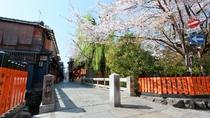 当館近くの京都らしい春の風景、祇園白川の桜。