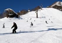 栂池高原スキー場の様子