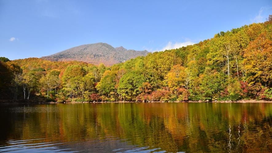 *周辺観光/笹ヶ峰高原の清水ヶ池 トレッキングやハイキングにぴったり!