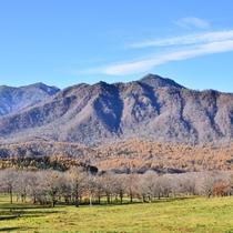 *周辺観光/笹ヶ峰牧場 秋の風景