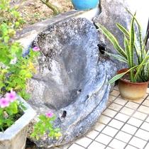 玄関にひっそり座っているのは大昔西表島に生息していたオオジャコガイの化石です