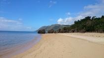 忘勿石の浜