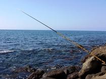 釣竿無料レンタル