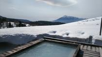宿泊者様専用露天風呂からの春の岩手山