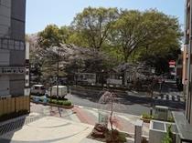 客室からの景色(正面 神社)