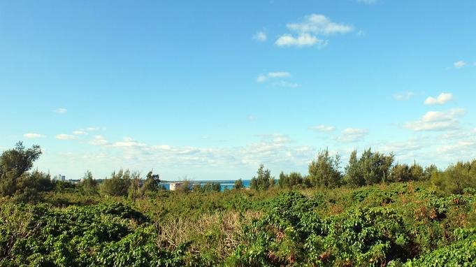 【基本プラン】セルフスタイル&プライベート重視♪充実の設備で自由&快適な宮古島滞在!/朝食付