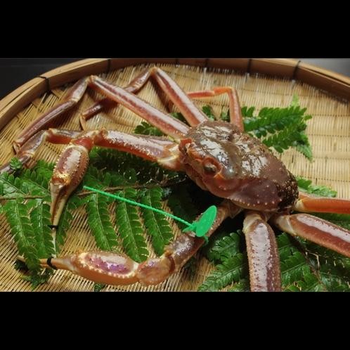 【間人蟹】時には赤字になるほど高騰する間人蟹ですが当館はどのような状況でも定価でご用意します