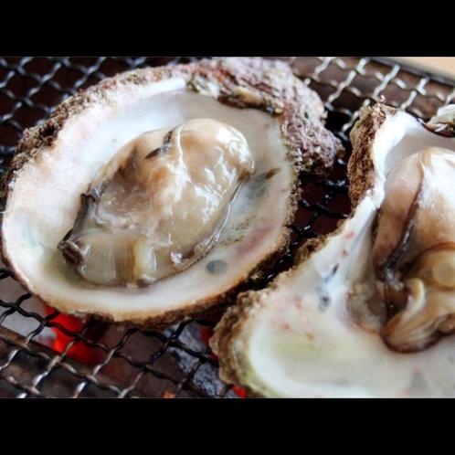 【真牡蠣】冬の旬食材は蟹だけじゃない。小ぶりで肉厚の濃厚な味わいが特徴です。